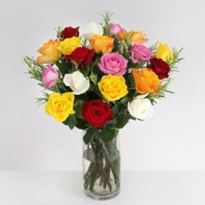 Fairtrade Classic Roses - flowers