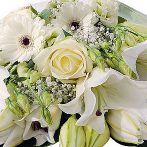 White Gift Wrap - flowers