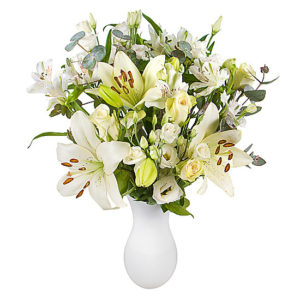 White Letterbox Flowers