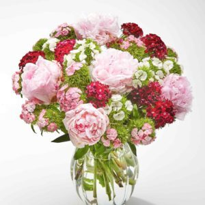 Sweet William and Peonies