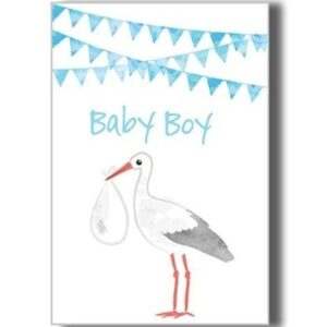 Greeting Card _ New Baby Boy